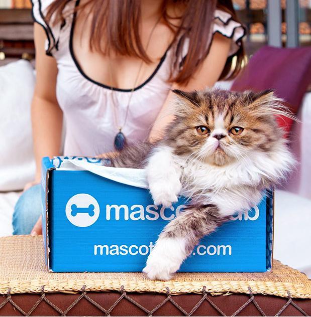 Cajas con muestras de productos para mascotas