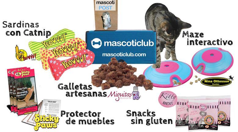 Cajas con muestras de productos para mascotas - Gatos