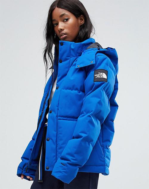 precio chaqueta north face